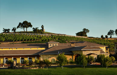 The Meritage Resort and Spa image
