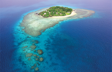 Royal Davui Island Resort image